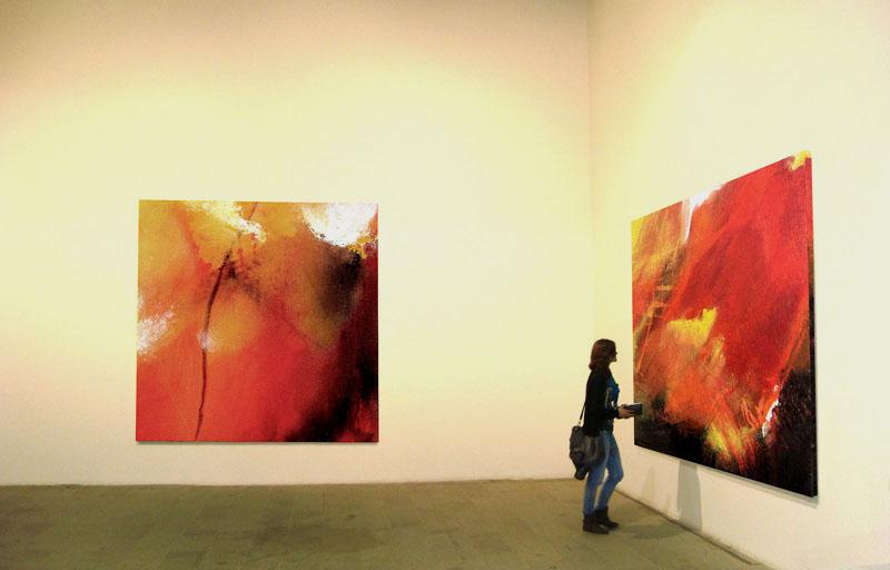 Willi Mayerhofer: red dreams